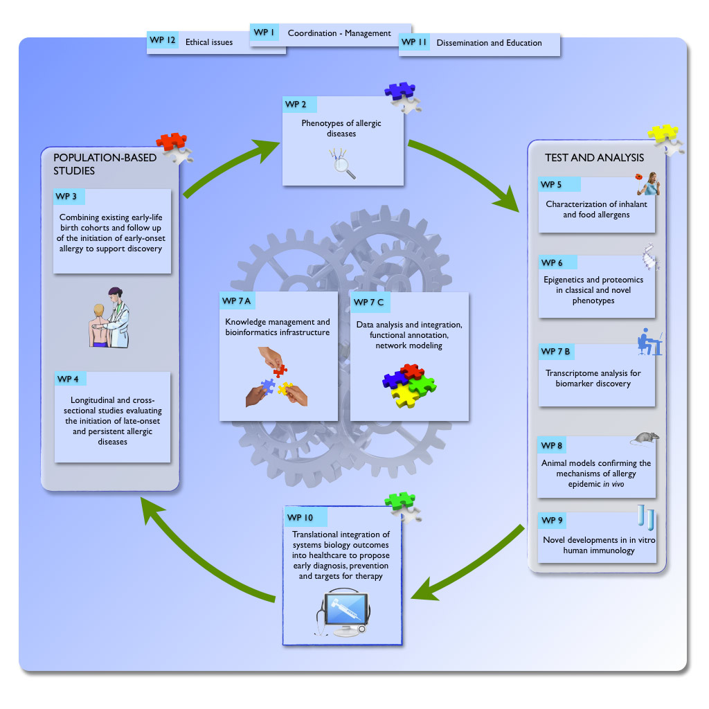 MeDALL WPs workflow